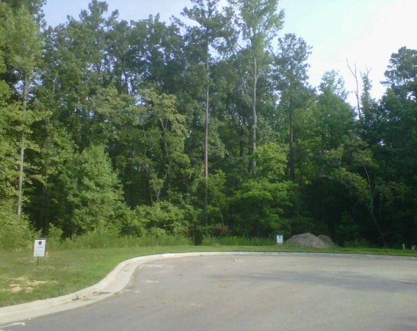 2011 JULY Homes By Dickerson - Dark Forest Dr -3