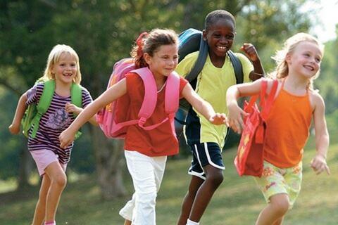 Chapel Hill Nc Schools Briar Chapel By Newland Communities