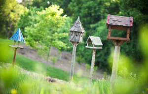 Birdhouses.png